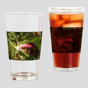 Christmas Cactus Drinking Glass