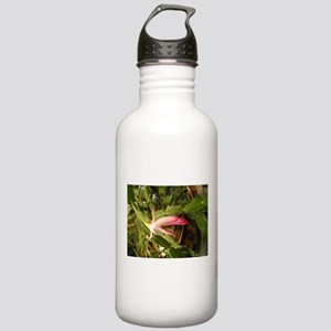 Christmas Cactus Stainless Water Bottle 1.0L