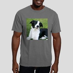 BorderSmMug Mens Comfort Colors Shirt