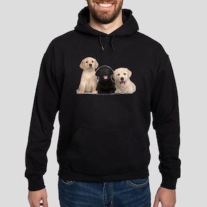 Labrador puppies Hoodie (dark)
