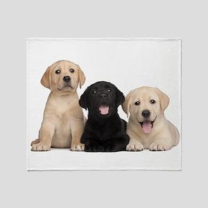 Labrador puppies Throw Blanket