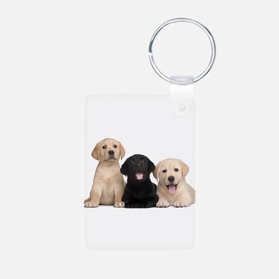 Labrador puppies Keychains