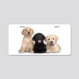 Labrador puppies Aluminum License Plate