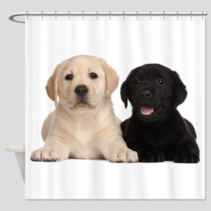 Labrador puppies Shower Curtain