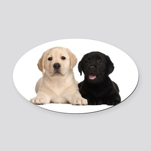 Labrador puppies Oval Car Magnet