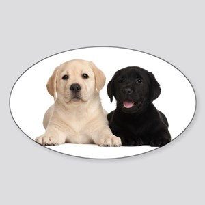 Labrador puppies Sticker (Oval)