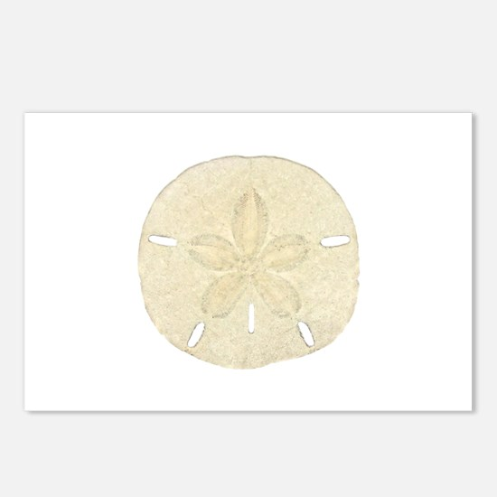 Sand Dollar Logo Postcards (Package of 8)