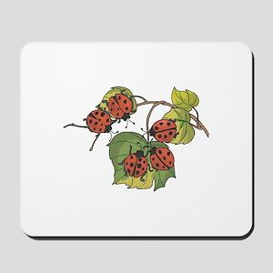 Ladybugs on Leaves Mousepad