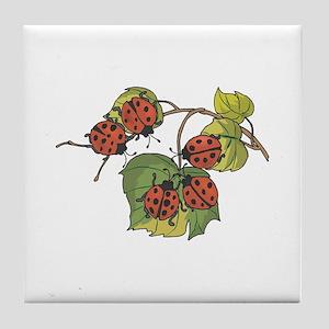 Ladybugs on Leaves Tile Coaster