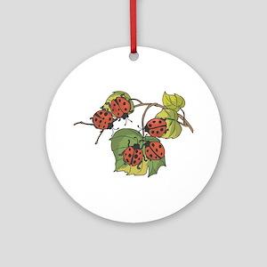 Ladybugs on Leaves Ornament (Round)