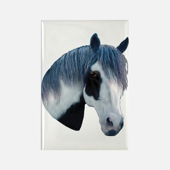 Paint Horse Portrait Rectangle Magnet