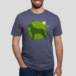 rw-ornament Mens Tri-blend T-Shirt