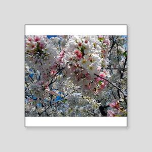 Beautiful Photograph of Summer Blossoms Square Sti