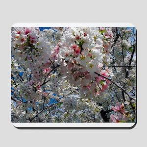 Beautiful Photograph of Summer Blossoms Mousepad