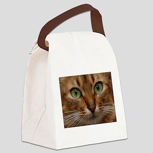 Somali cat Canvas Lunch Bag