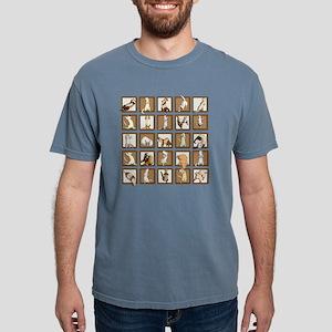 Ferret Squares Shower Cu Mens Comfort Colors Shirt