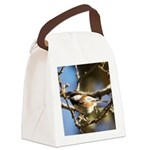 Chickadee in Tree Canvas Lunch Bag