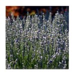Sonoma Lavender in Vineyard Tile Coaster