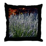 Sonoma Lavender in Vineyard Throw Pillow