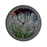 Sonoma Lavender in Vineyard Wall Clock
