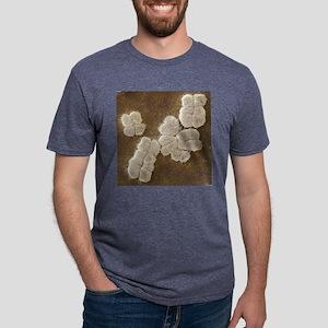 Human chromosomes, SEM Mens Tri-blend T-Shirt