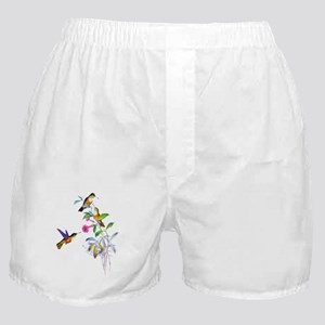 Hummingbirds Boxer Shorts