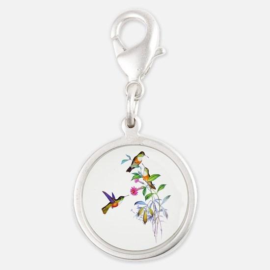 Hummingbirds Silver Round Charm