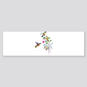 Hummingbirds Sticker (Bumper)