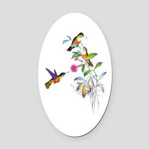 Hummingbirds Oval Car Magnet