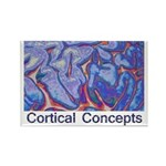 Cortical Concepts Rectangle Magnet