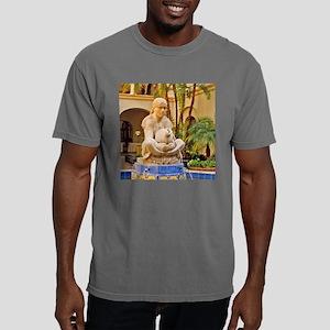 san diego balboa park fo Mens Comfort Colors Shirt