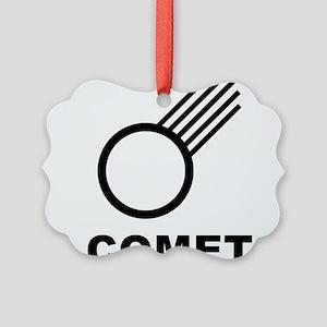 Comet Picture Ornament