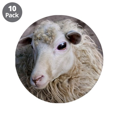 """Funny Sheep 3.5"""" Button (10 pack)"""