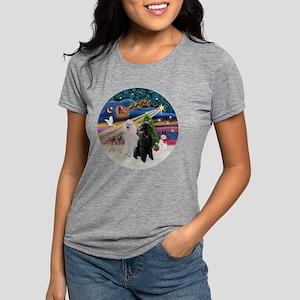 Xmas Magic - Poodles (Two Womens Tri-blend T-Shirt
