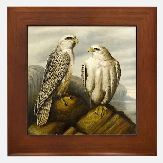 Painted Falcons Framed Tile