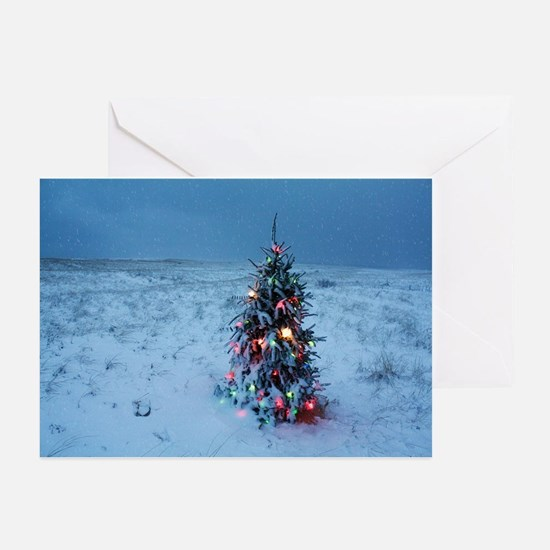 Christmas At The Beach Greeting Cards (Pk Of 20)