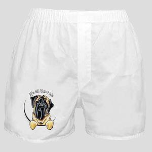 Bull Mastiff IAAM Boxer Shorts