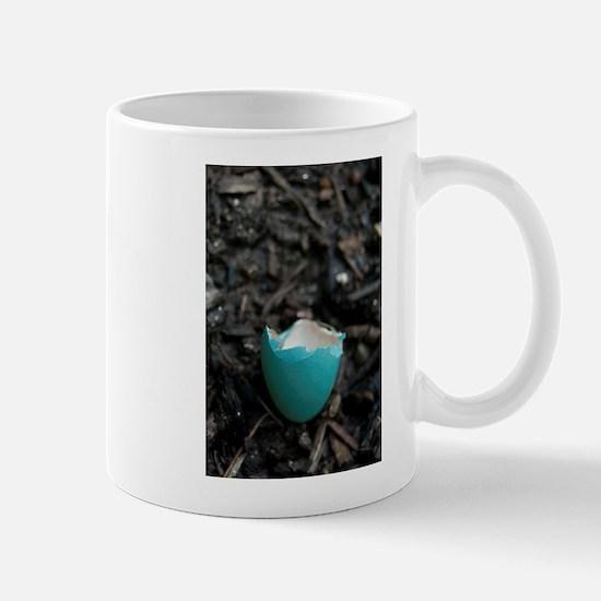 Robin's Egg Mug