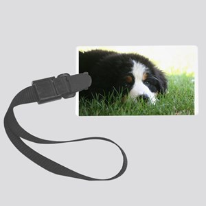 Bernese Puppy Large Luggage Tag