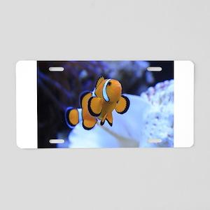 Nemo Aluminum License Plate