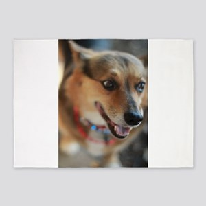 WElsh corgi up closeportrait 5'x7'Area Rug