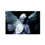 New Orleans cemetery angel Rectangle Magnet (100 p