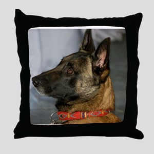 belgian malinios second Throw Pillow