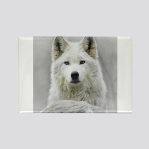 White Wolf Rectangle Magnet