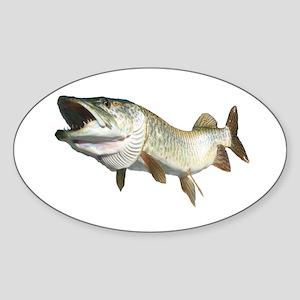 Toothy Musky Sticker (Oval)