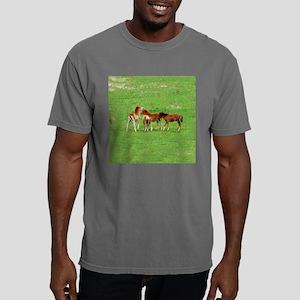babiesmagnet Mens Comfort Colors Shirt