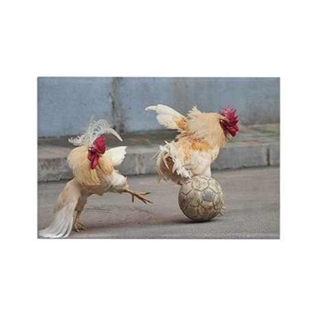 Roosters Play Soccer Rectangle Magnet