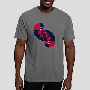 fib rwb II t shirt Mens Comfort Colors Shirt