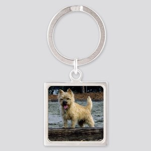 Young Cairn Terrier Square Keychain