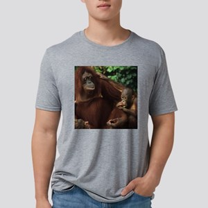 Bornean Orangutan with Baby Mens Tri-blend T-Shirt